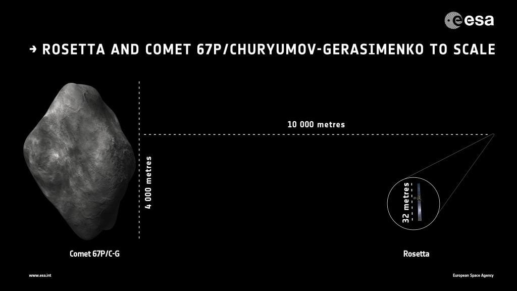 Sonda Rosetta i kometa 67P/Czuriumow-Gierasimienko w jednej skali / Credit: ESA