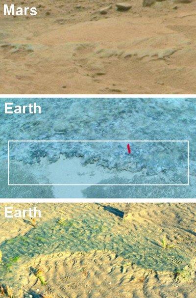 Potencjalne pozostałości po MISS - erozji wywołanej przez ekosystemy mikroorganizmów (u góry); krawędź maty mikroorganizmów Portsmouth Island, USA (środek); zerodowana powierzchnia pod wpływem działalności mikroorganizmów z naszych czasów Mellum, Niemcy (dół). Image credit for Mars: NASA; Earth: Nora Noffke