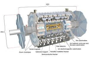 Przekrój przez detektor ATLAS