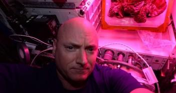 Scott Kelly i kosmiczna sałata. Zdjęcie z 9 sierpnia 2015 / Credits - NASA